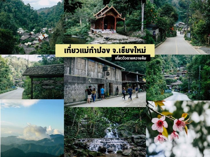 Mae Kam pong cover